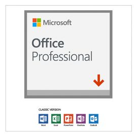Microsoft Office Pro Plus 2019 79P-05729